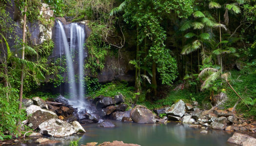 Waterholes and Waterfalls