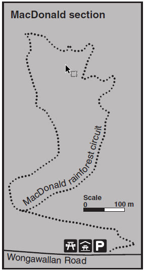 Tamborine Walking Track Map - MacDonald Section