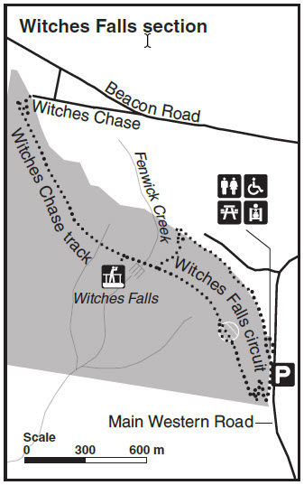 Tamborine Walking Track Map - Witches Falls Section