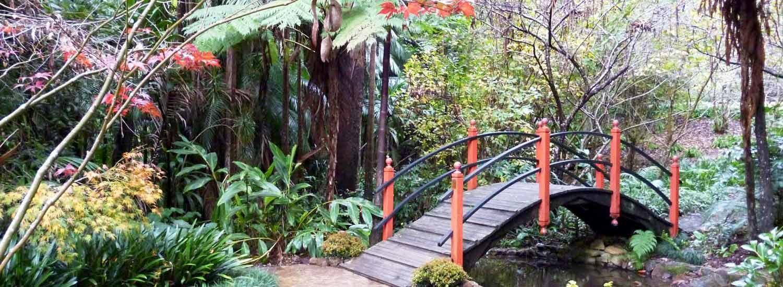 Botanic Gardens - Japanese Garden
