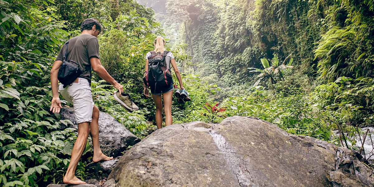 Man and woman walking in the Rainforest Tamborine Mountain