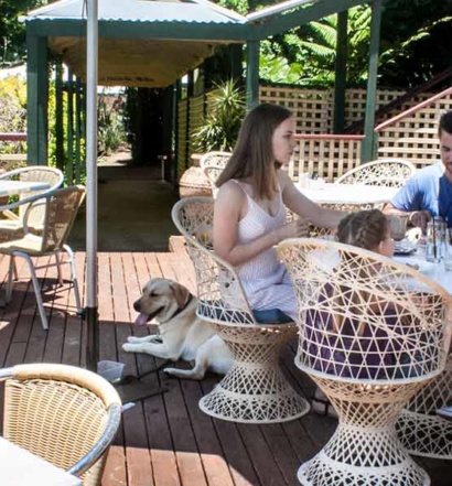 Group eating on the huge deck at The Manor Restaurant and Bar Tamborine Mountain